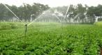西宁PE灌溉管